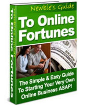 Product picture Newbies Guide To Online Fortunes